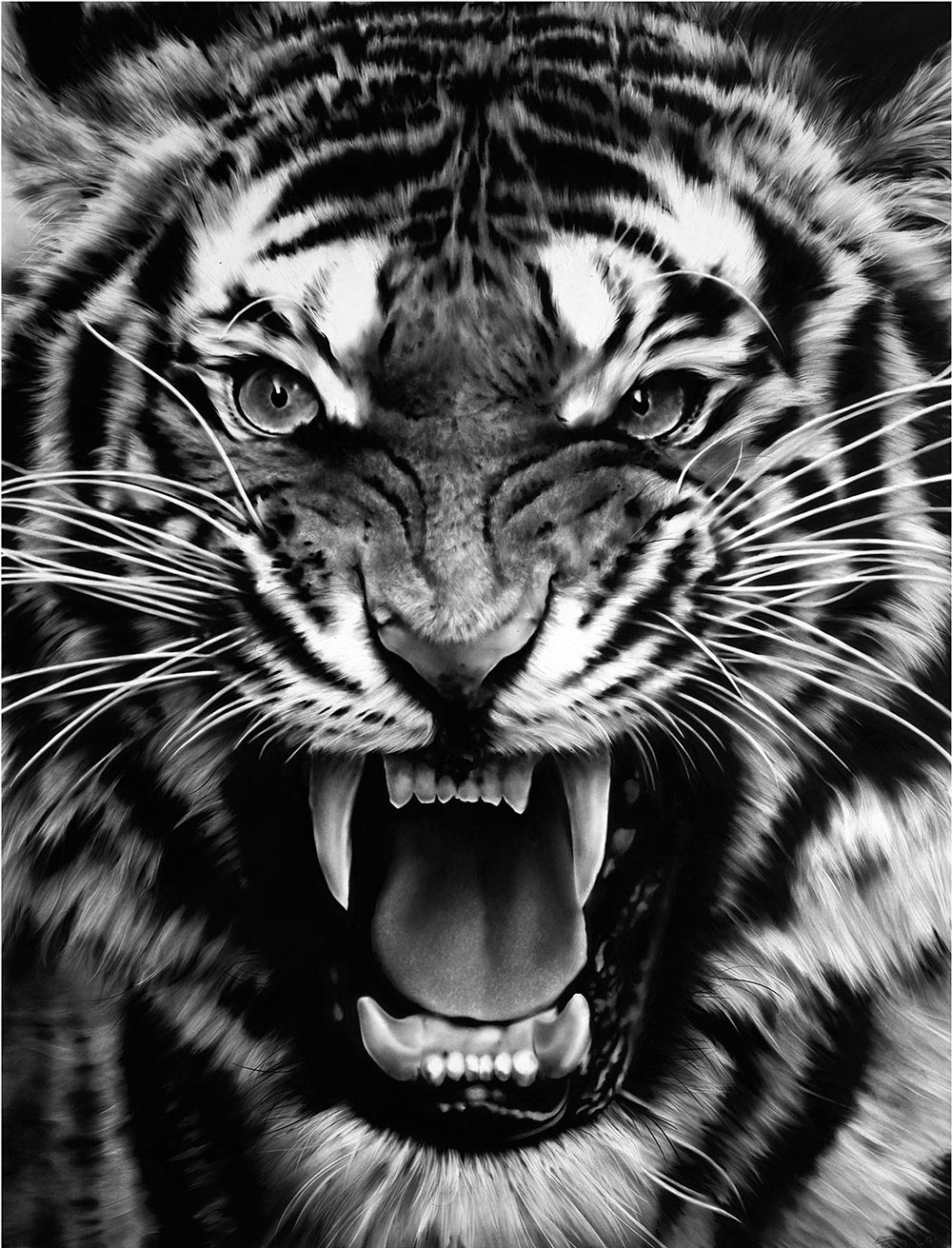 Robert Longo Untitled (Roaring Tiger)