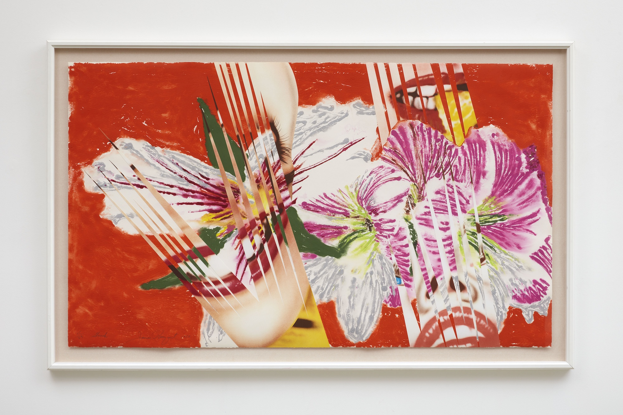 James Rosenquist Shriek